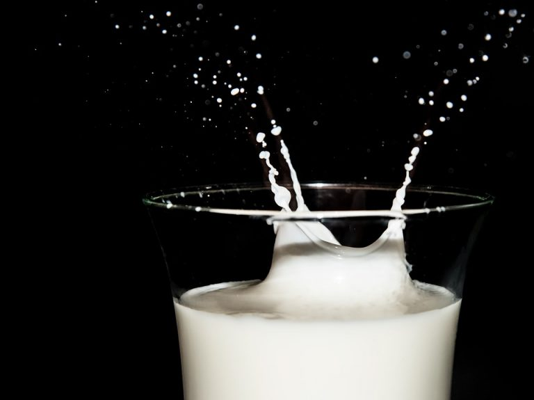 To drink or not to drink cow's milk?