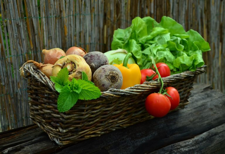 Vitamins, their bioavailability and changes during storage, baking and boiling