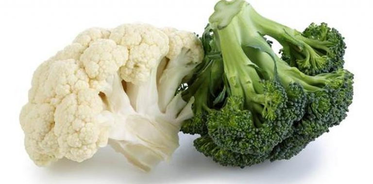 Broccoli and cauliflower support the growth and regeneration of muscles