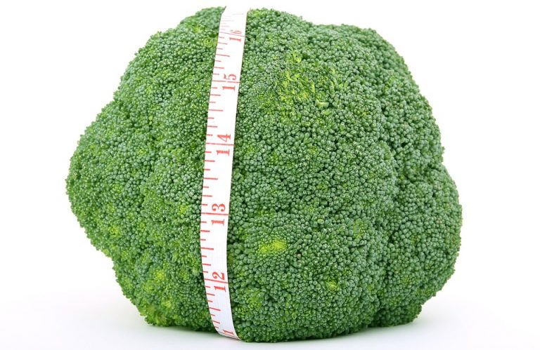 Sulforaphane from broccoli a myostatin blocker