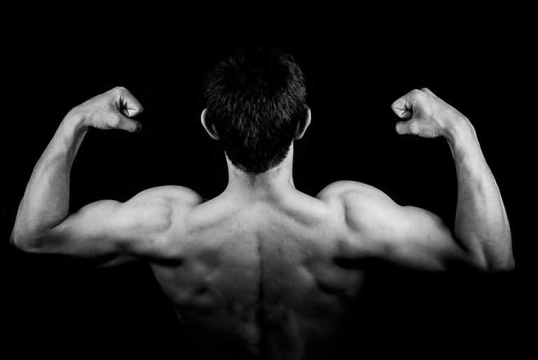 Leucine successfully builds muscles!