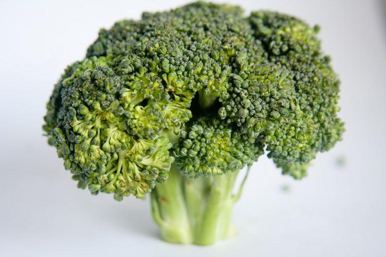 Broccoli on an athletes table