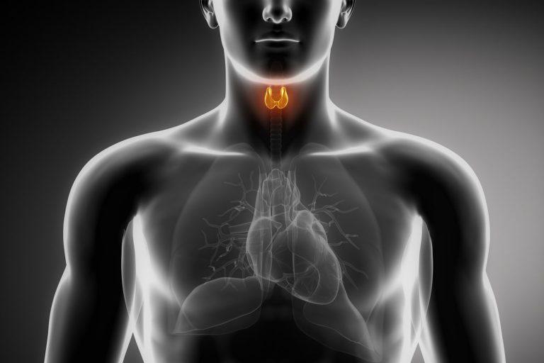 Selenium in thyroid diseases