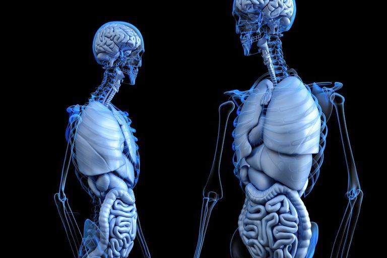 Bone fractures – vitamin help