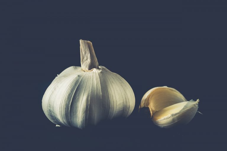 Antimicrobial properties of garlic