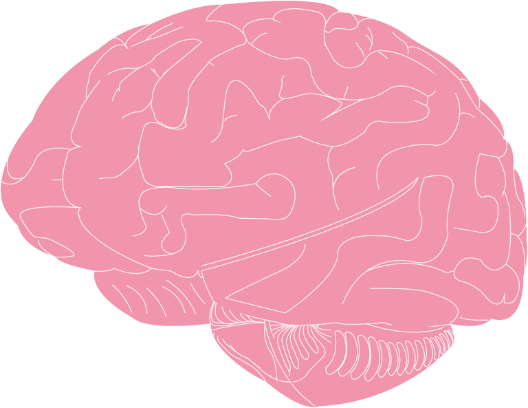 Sunifiram and piracetam – what are those substances?
