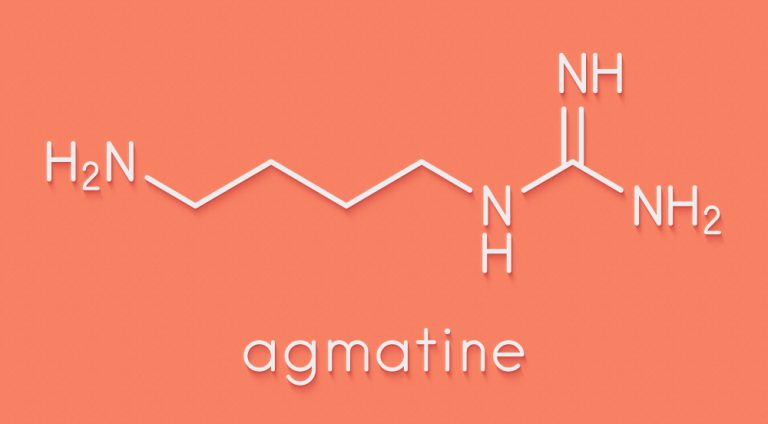 Agmatine compedium – benefits, dosages and side-effects