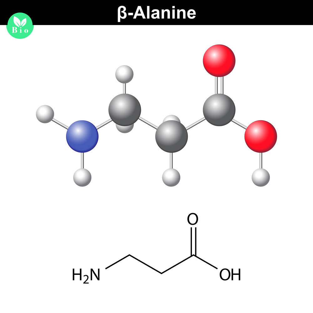 Beta Alanine is a substance which will boost your endurance!