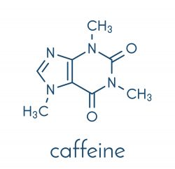 Stimulants Battle Royal! Main competitor – caffeine!