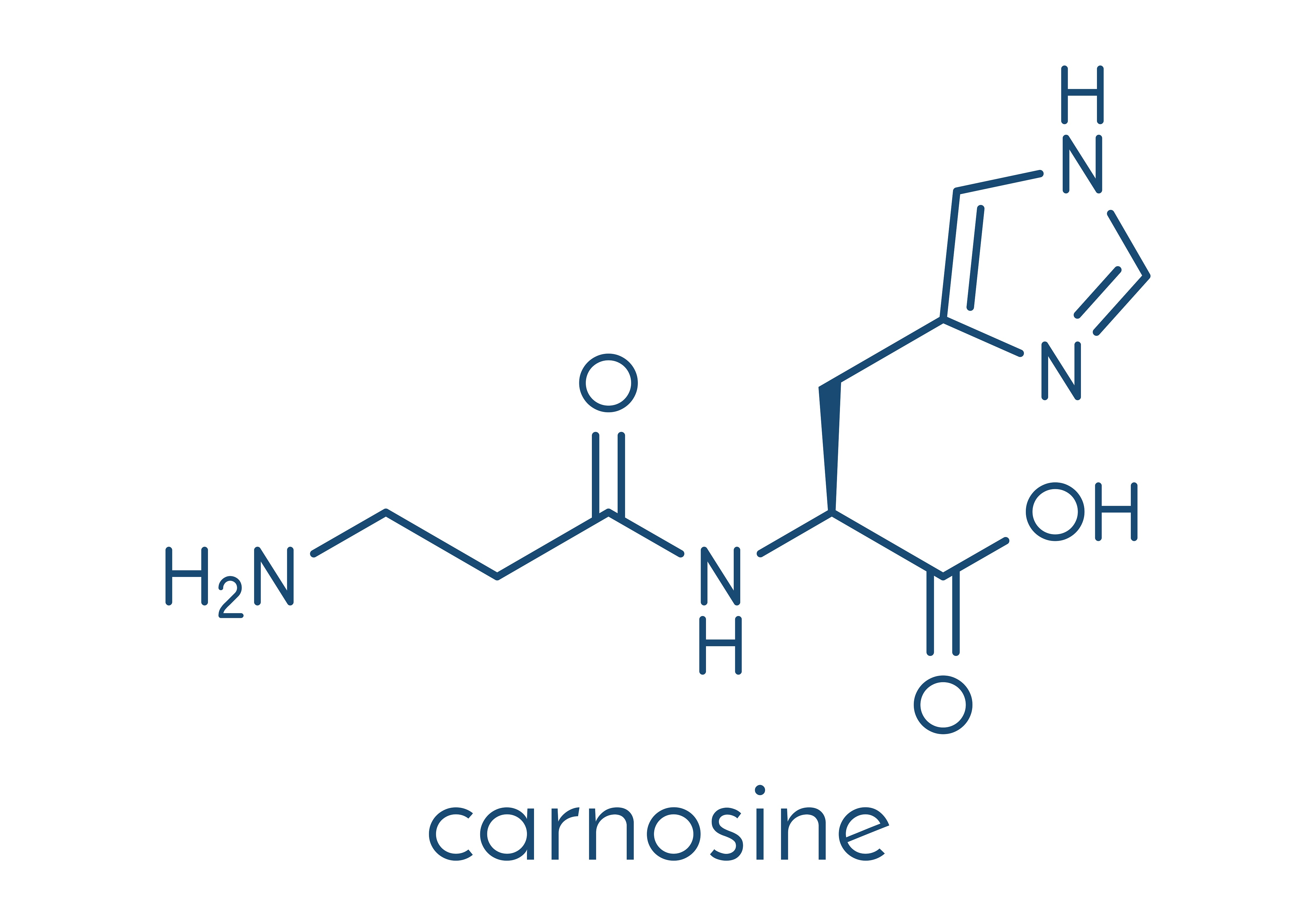 Carnosine is also a substance which supplementation would be helpful in improving endurance