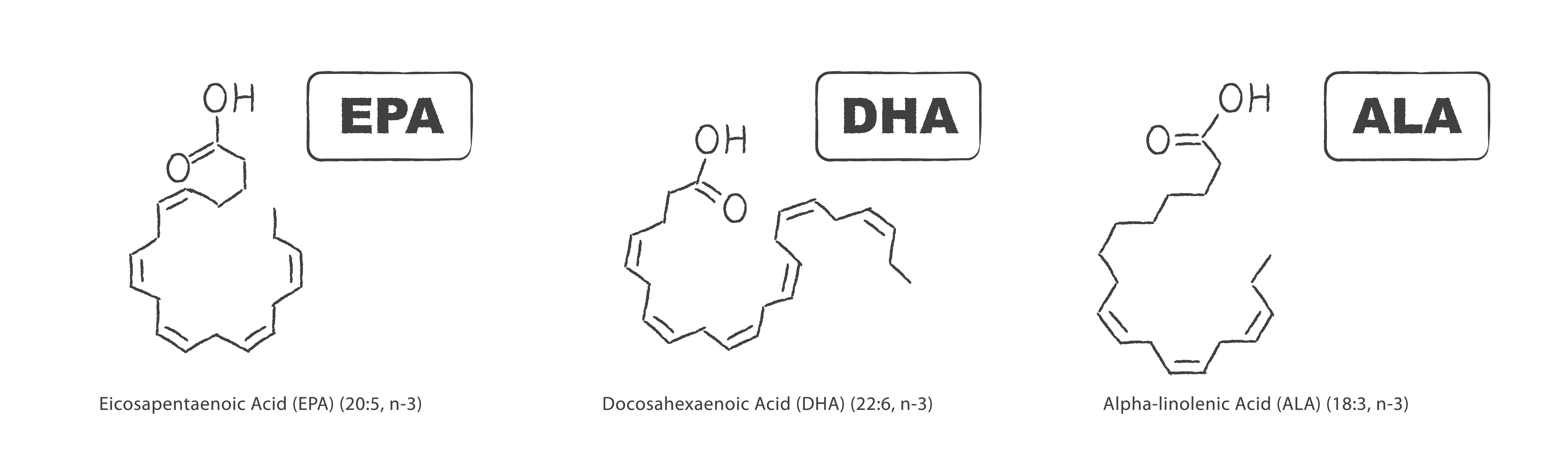 Set of three most important healthy fatty acids - EPA, DHA and ALA