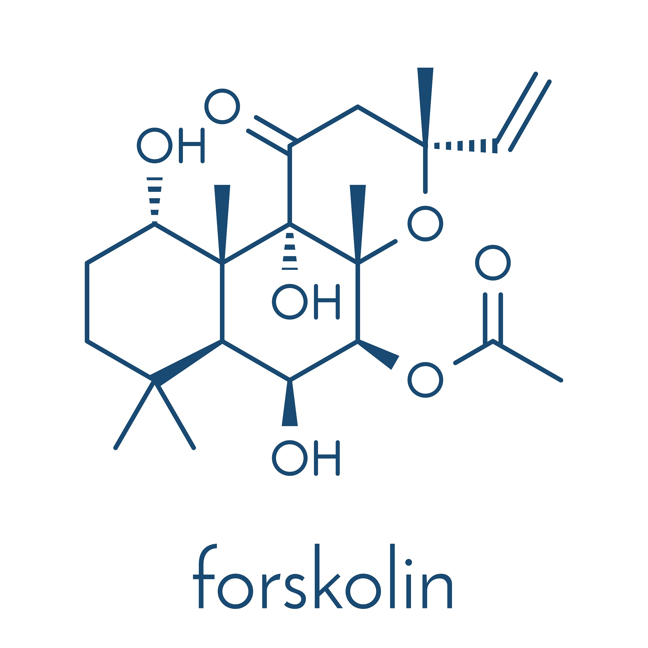 Forskolin - chemical formula