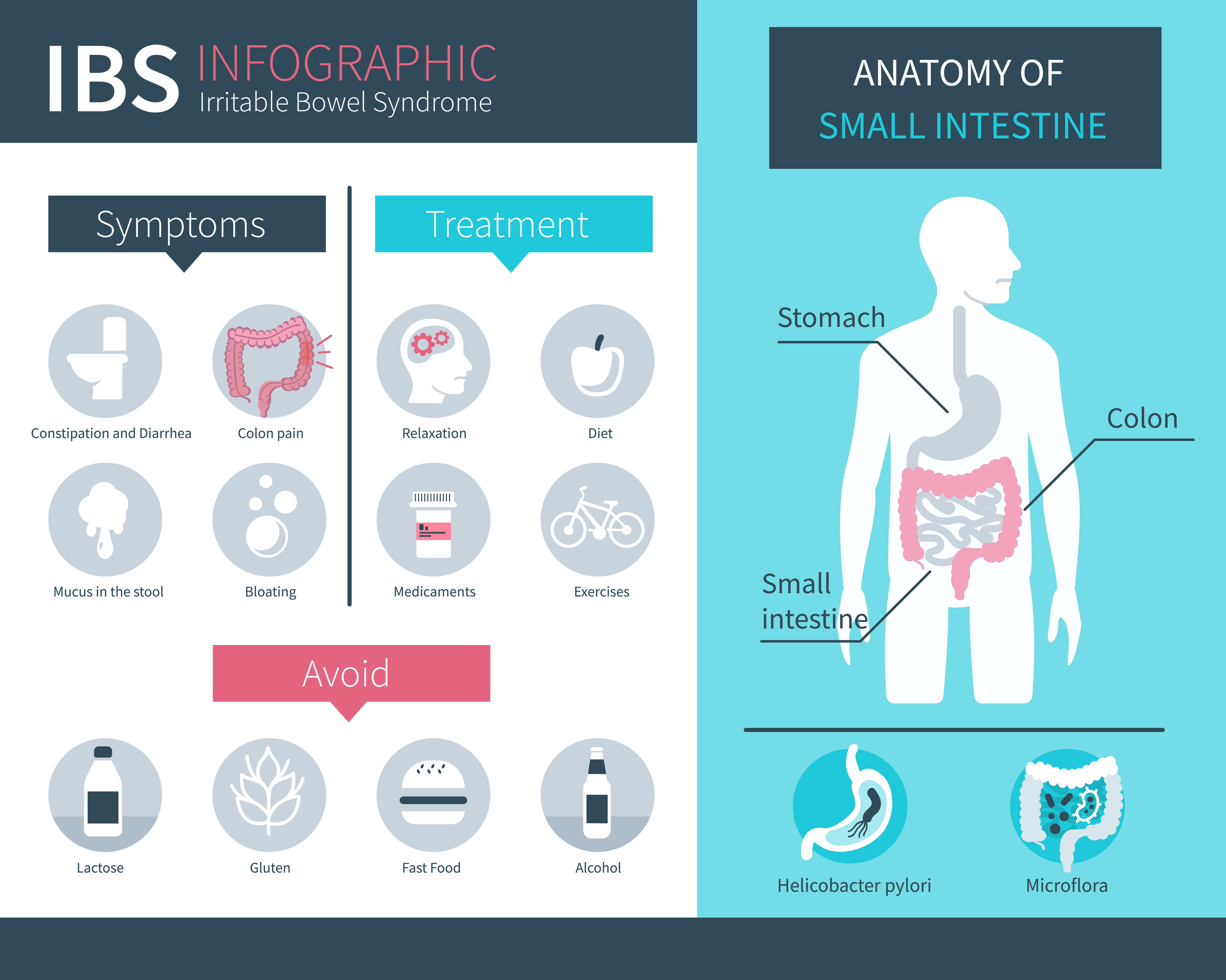 Irritable Bowel Syndrome basic information - infographic about symptoms and treatment suggestions