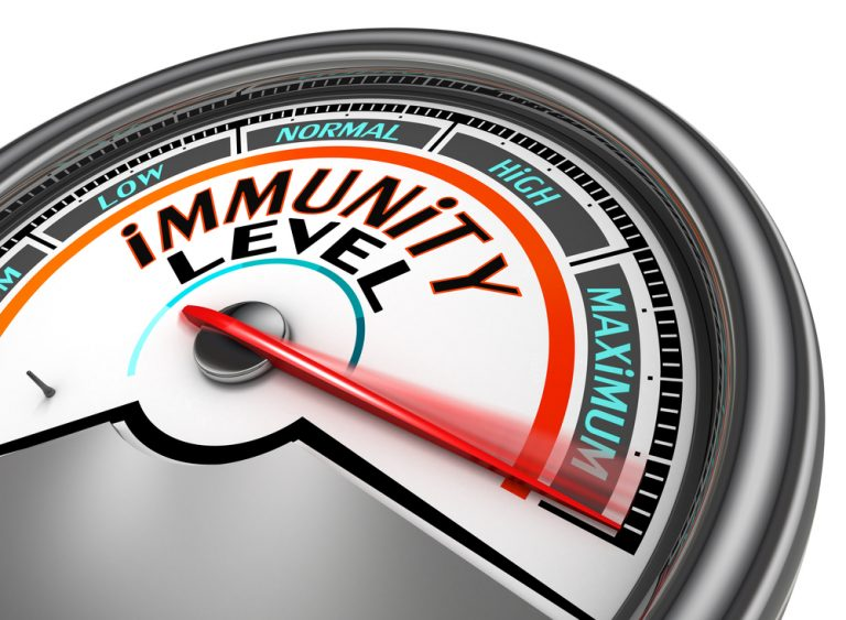 How to survive or few words about immune system