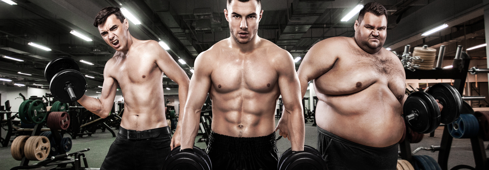 Three body types - ectomorhpic, mesomorhpic and endomorhpic