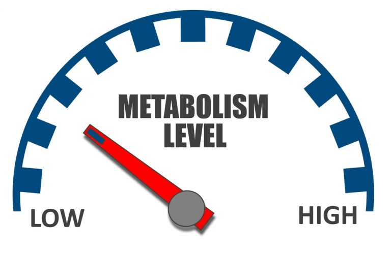 How to speed up metabolism? Tips for metabolism boost!