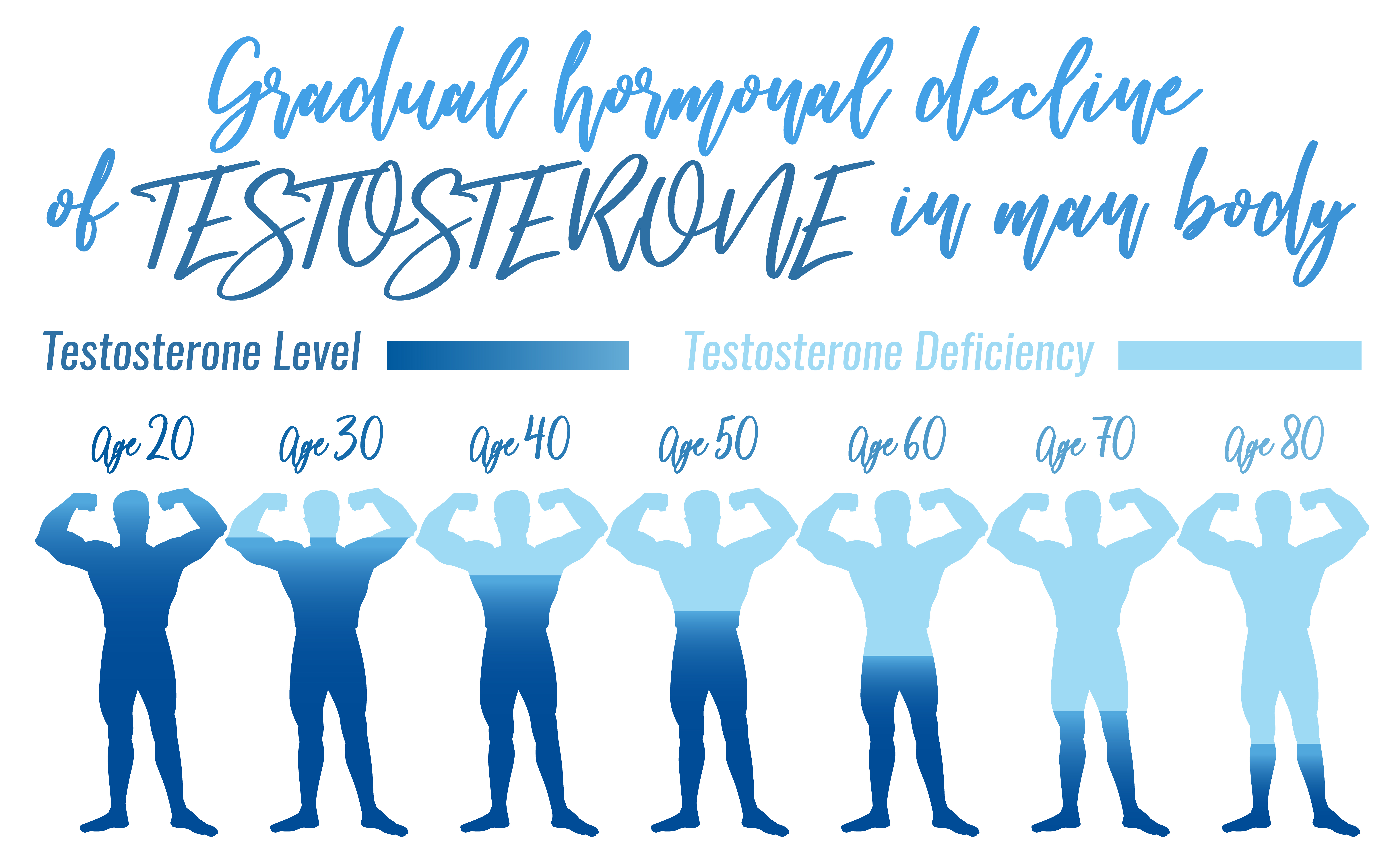 How testosterone level change with age