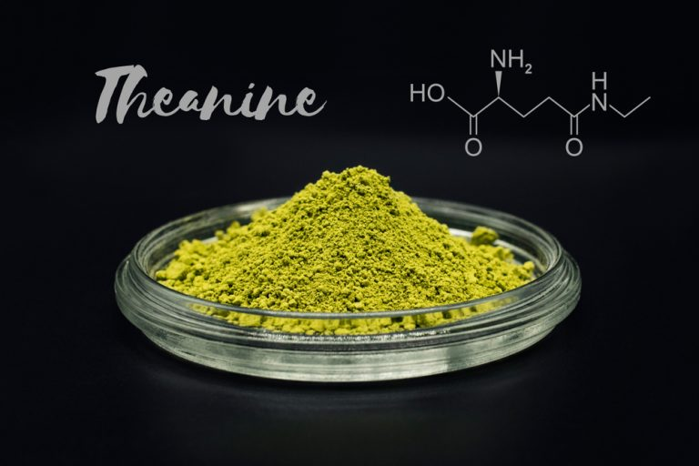 L-Theanine – a non-protein amino acid with wide range of interesting properties