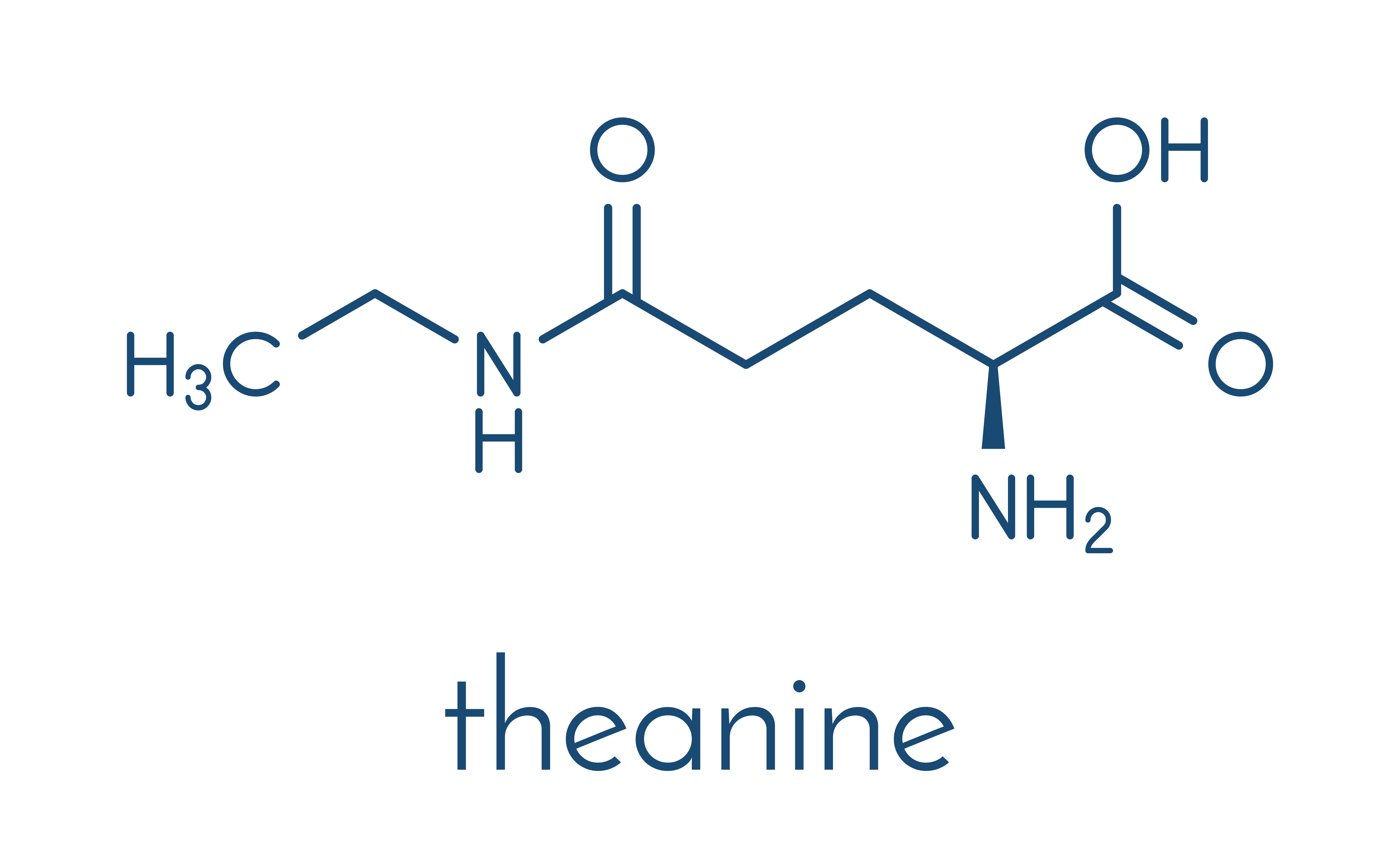 Theanine - chemical formula