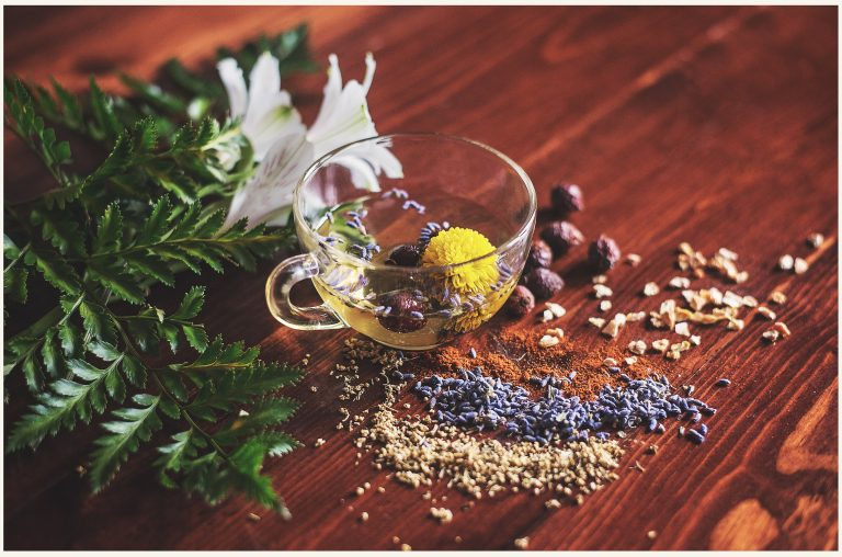 Herbs to speed up metabolism