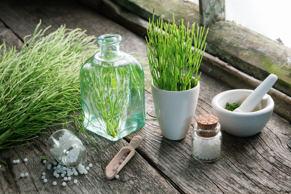 Horsetail - not only effective as diuretic, but also for improving your skin condition!