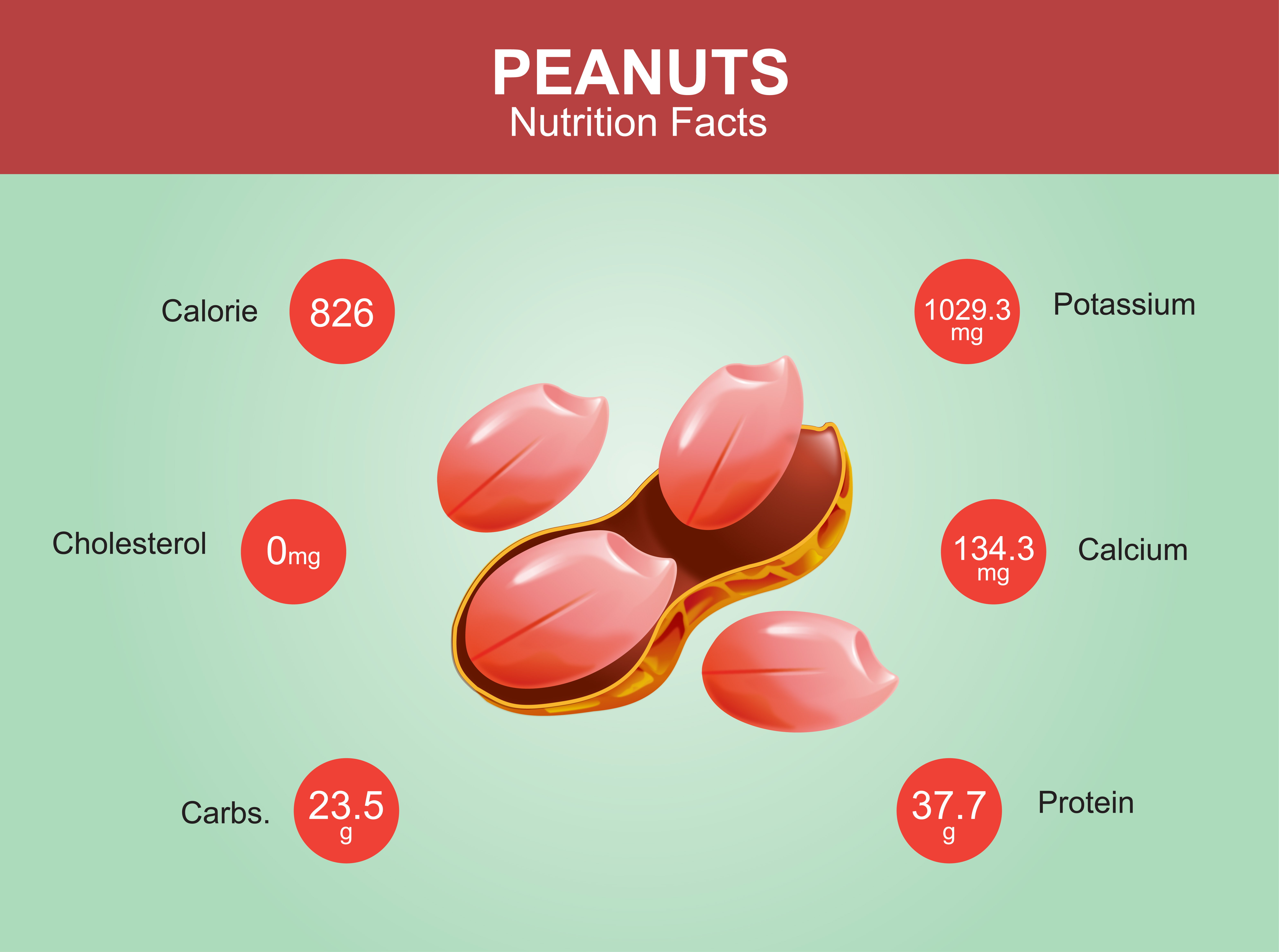 Peanut composition - infographic