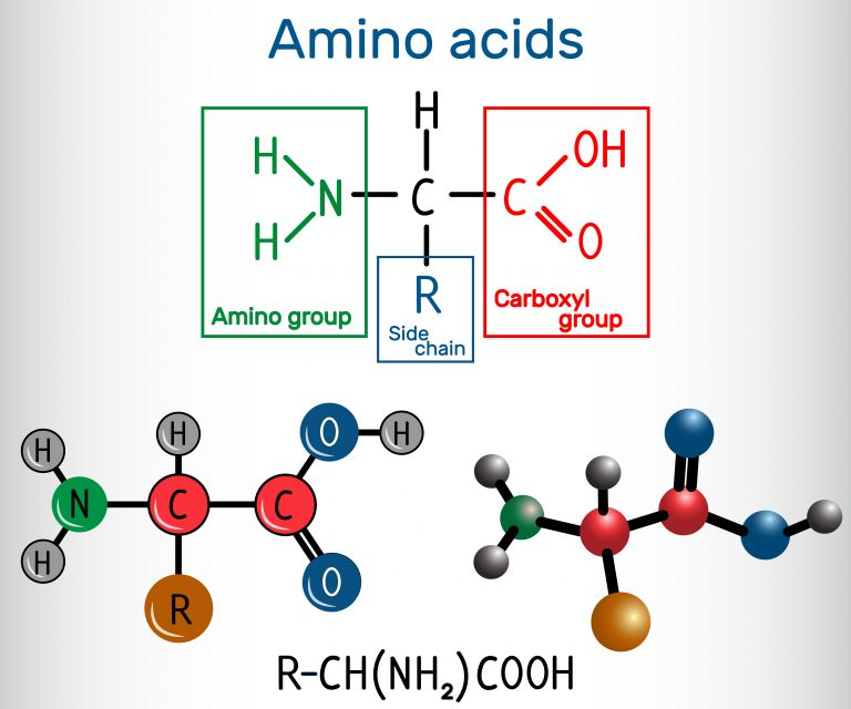 Proper supplementation of amino acids
