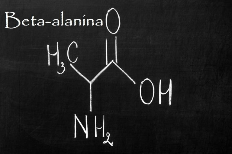 Beta-alanine – an amino acid that increases efficiency