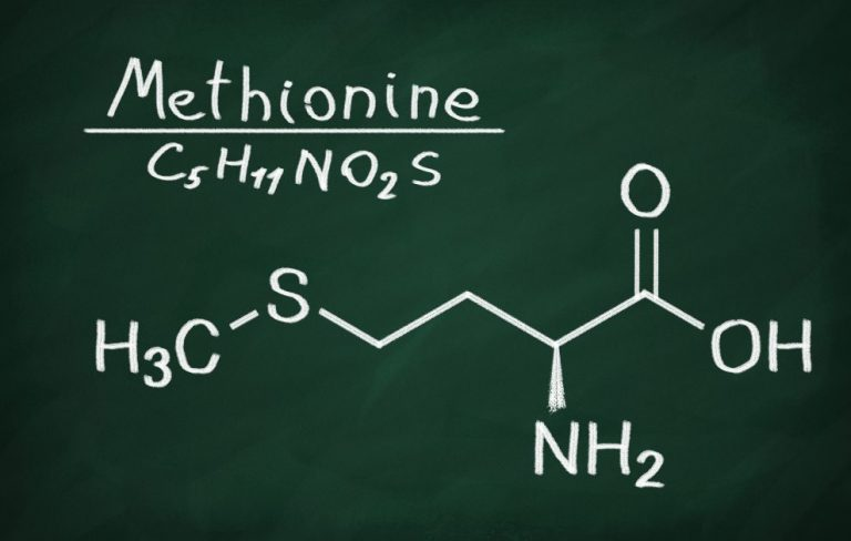 Methionine – support for the work of the whole organism