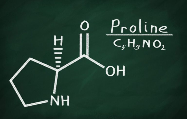 Proline – another valuable amino acid