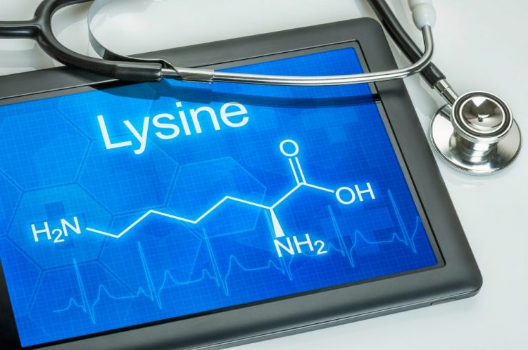 Lysine – an amino acid against osteoporosis
