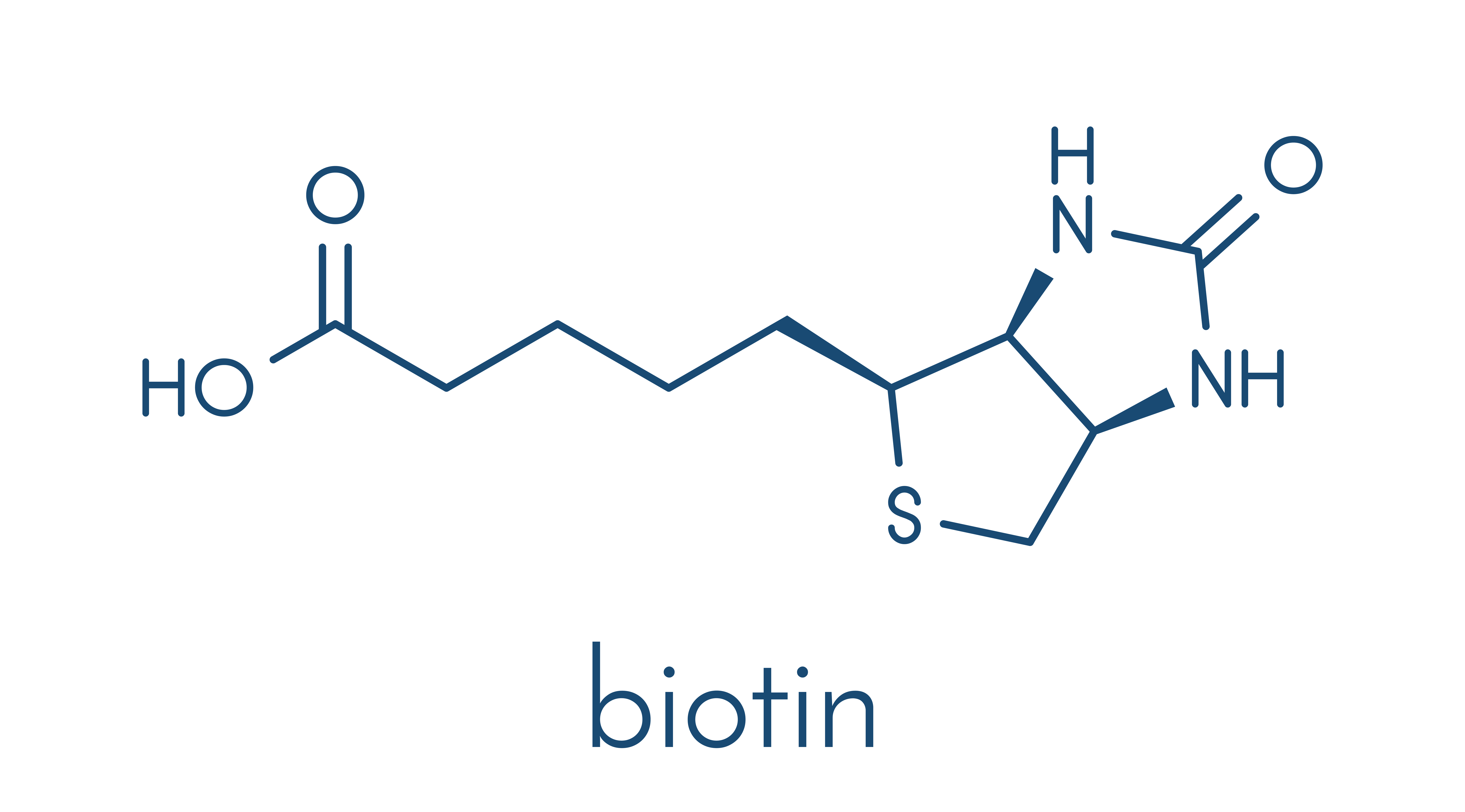 Biotin - chemical structure