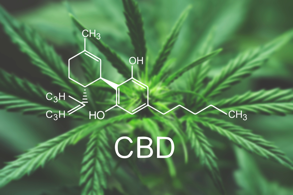 CBD is probably one of the most potent pro-health supplements at the moment!