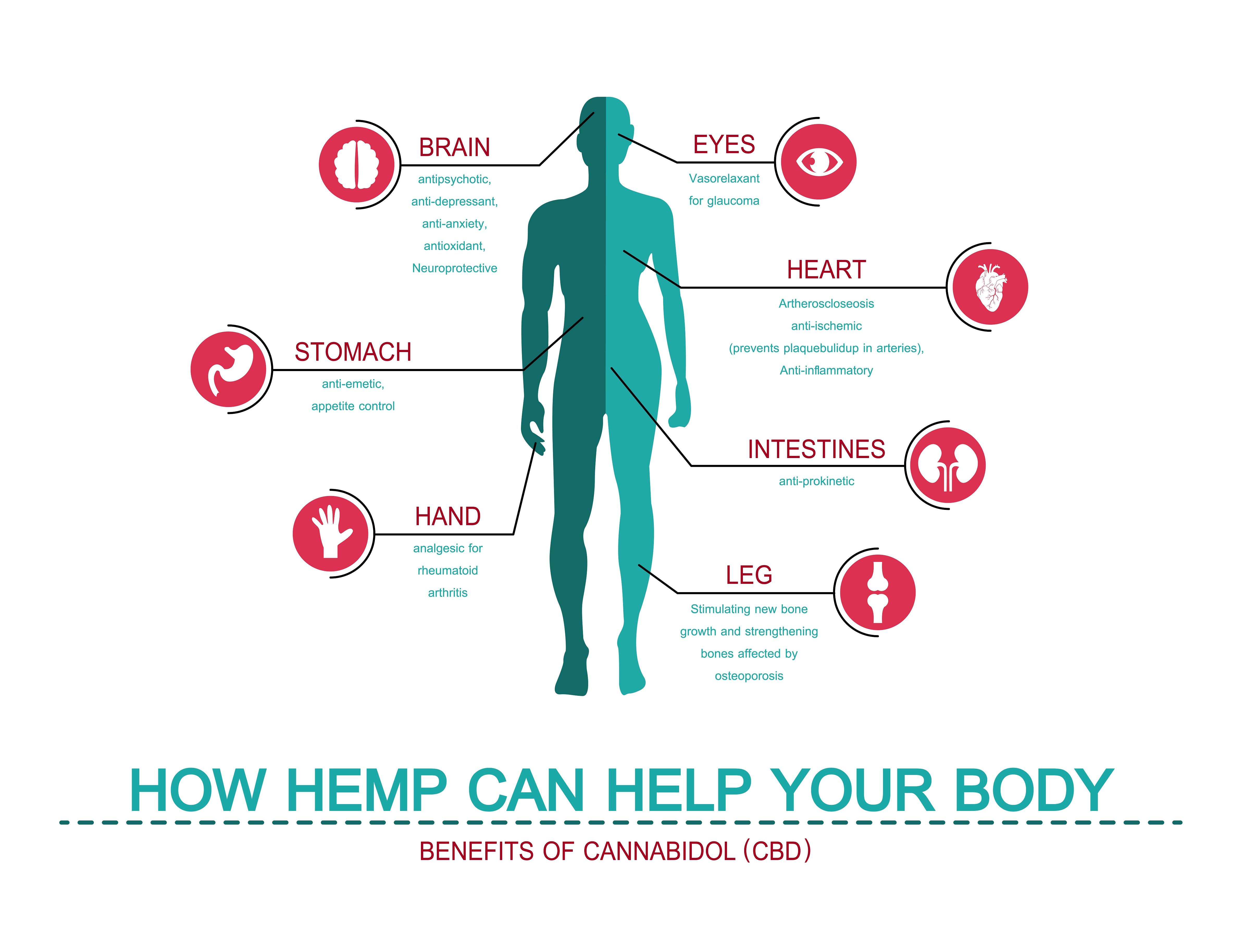 CBD benefits - infographic