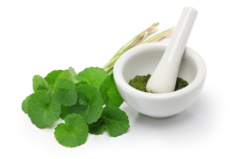 Gotu Kola – 10 amazing health benefits