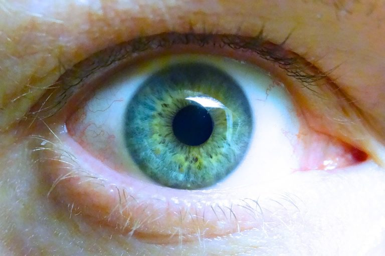 Vitamin B3 – help in the prevention and treatment of glaucoma