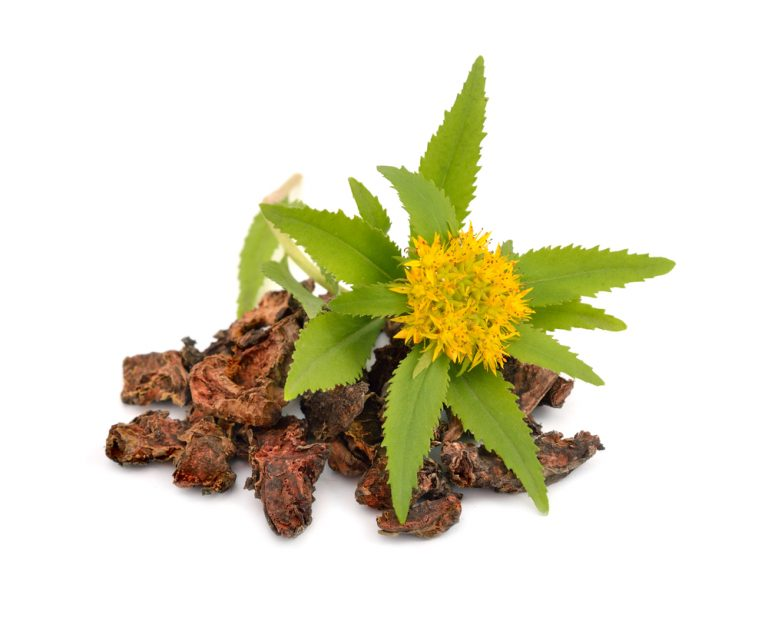 Rhodiola Rosea – the top 10 most important health benefits !