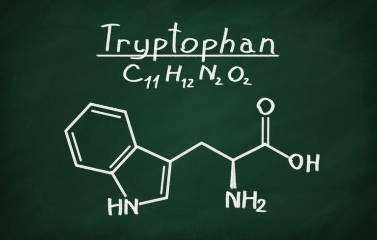 Tryptophan – salvation for the nervous system