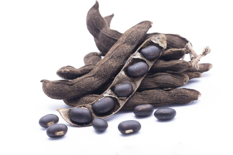 Mucuna Pruriens – 5 the most important health benefits