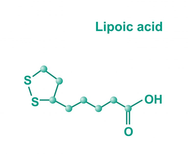 Alpha-lipoic acid (ALA) and obesity – are those related?