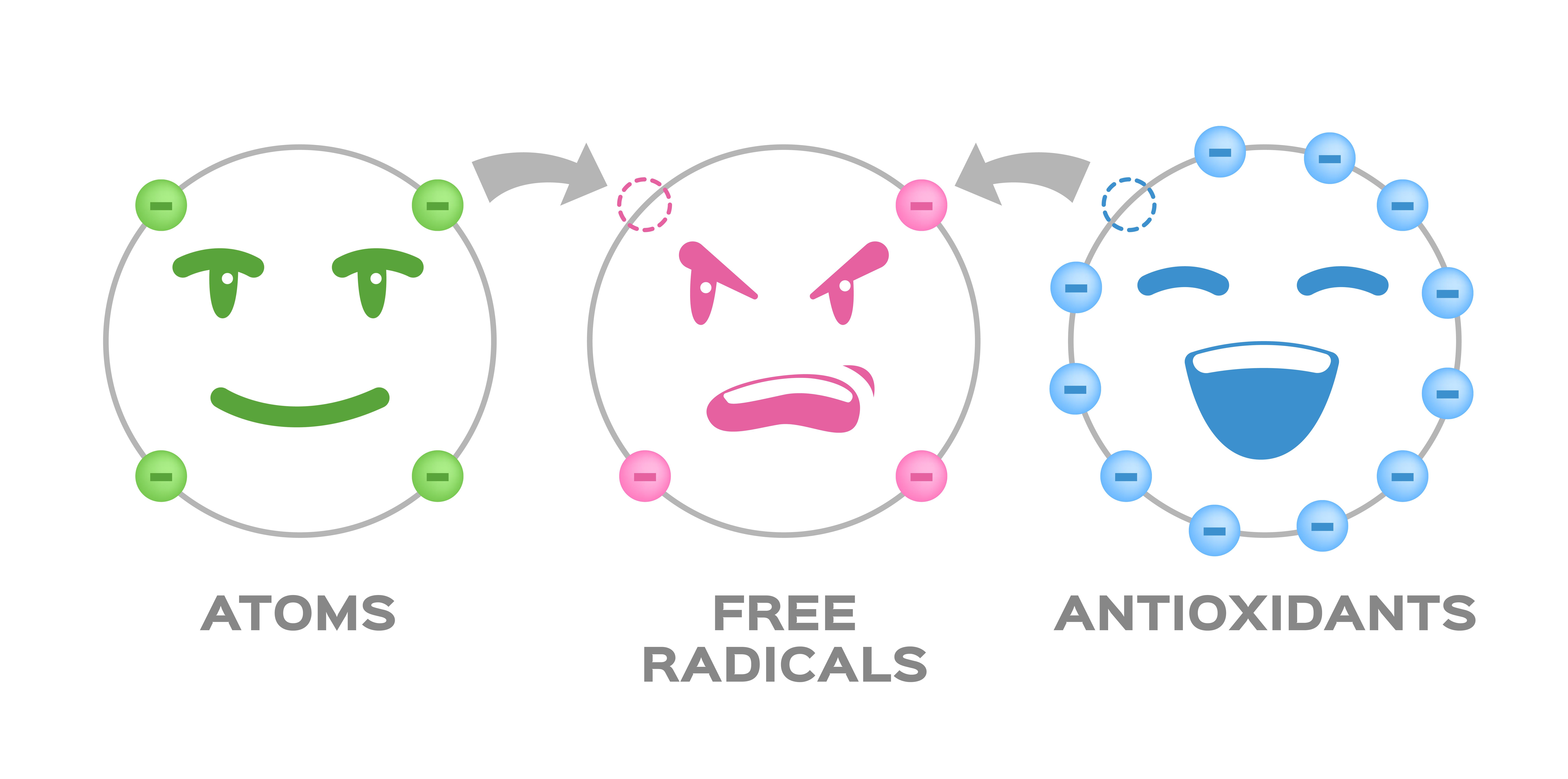How antioxidants work... Kind of!
