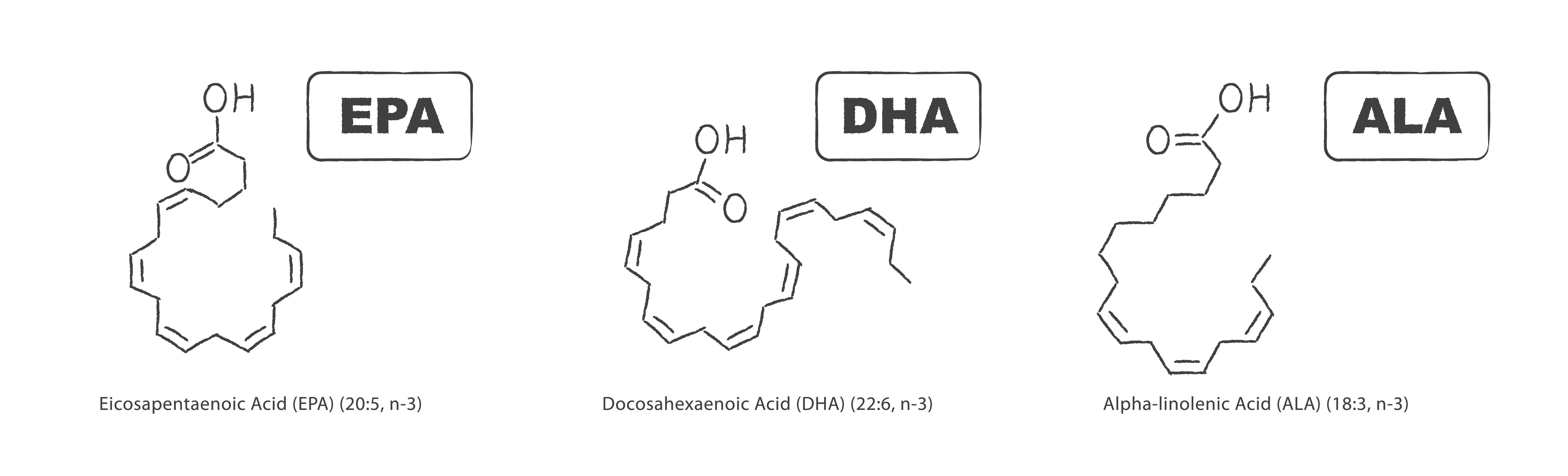 Most basic of omega 3 fatty acids - EPA, DHA and ALA
