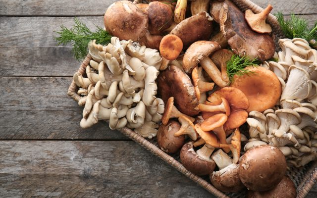 How to eat mushrooms so that they are not hard to digest?