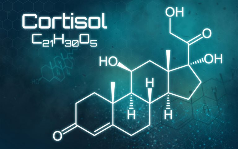 Cortisol and diet