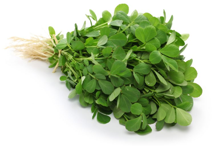 Fenugreek effectively enhances the benefits of creatine