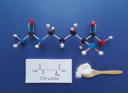 Citrulline – action and effects. L-citrulline as an effective anti-catabolic agent!