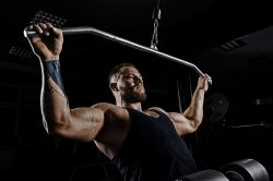 The Strength Workout vs. The Hypertrophy Workout