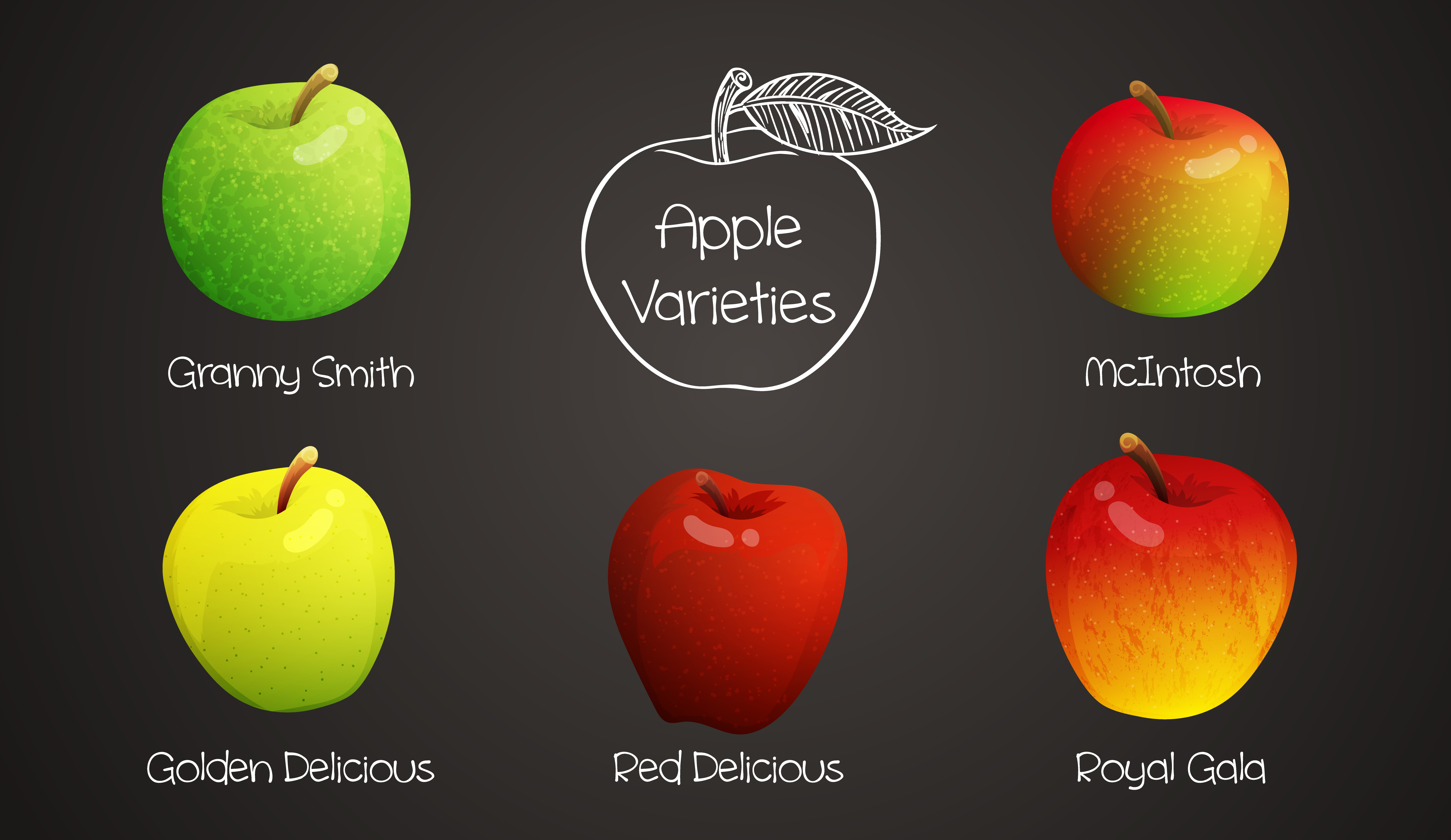 What is your favourite type of apple?