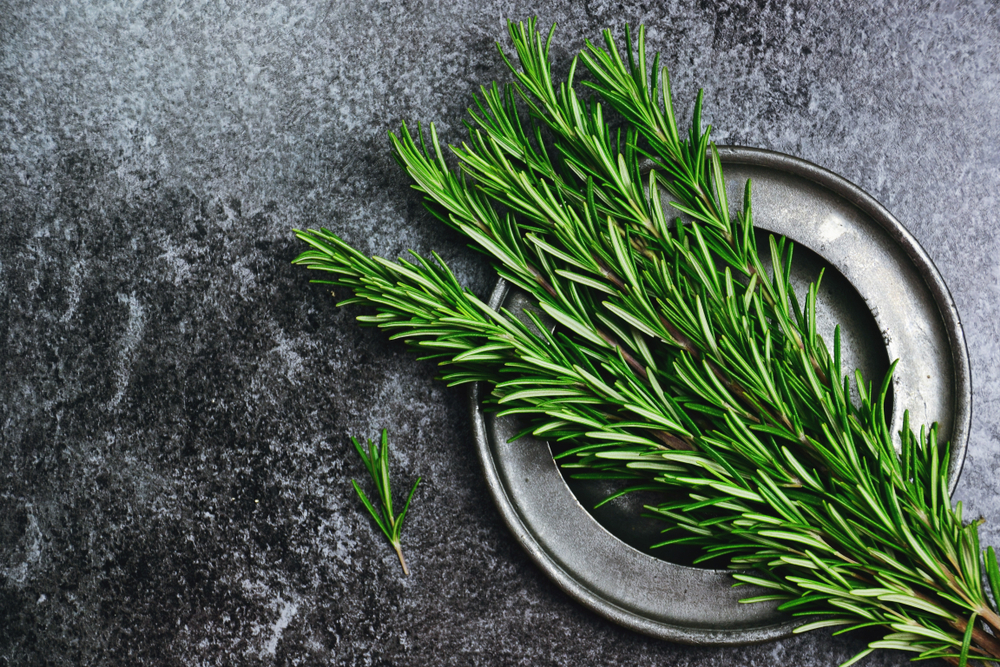 Rosemary will be great addition to more greasy dishes because its improve digestion