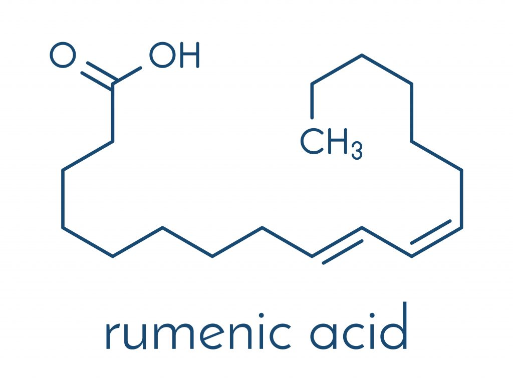 Chemical structure of CLA (called also rumenic acid)